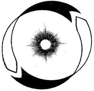 rogers logo circle 2006